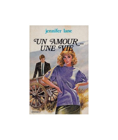 Collection Domino : Un amour... une vie par Jennifer Lane