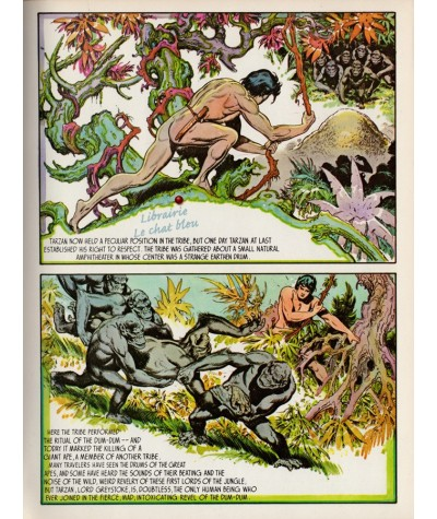 Tarzan of the apes by Burne Hogart