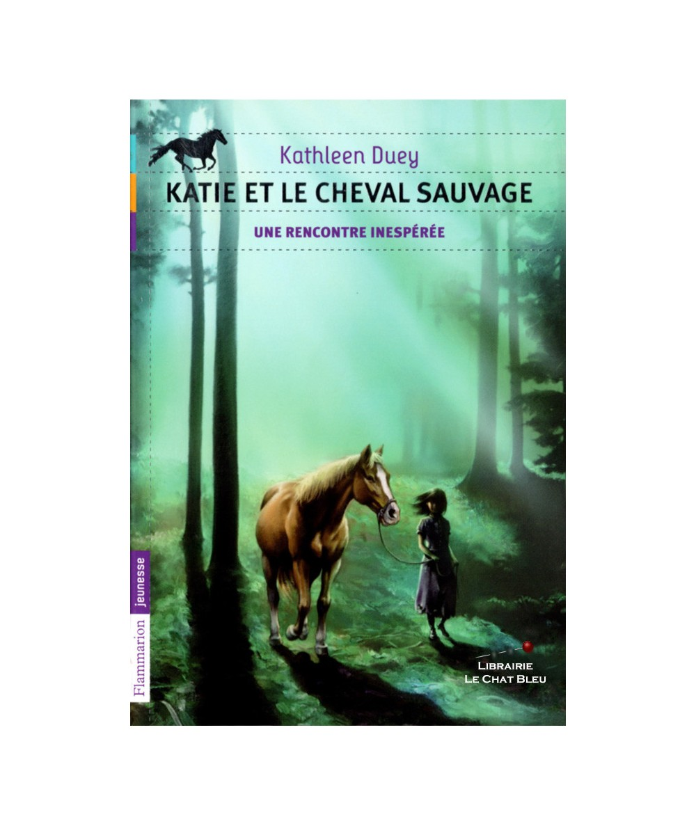 Katie et le cheval sauvage T1 : Une rencontre inespérée (Kathleen Duey)