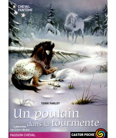Cheval fantôme T5 : Un poulain dans la tourmente (Terri Farley) - Castor Poche N° 1068